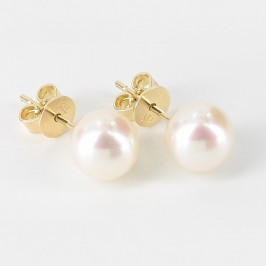 White AAA Akoya Pearl Earrings 8-8.5mm On 9K Yellow Gold
