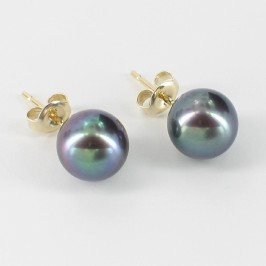 Freshwater Pearl Stud Earrings 8-8.5mm On 9K Yellow Gold