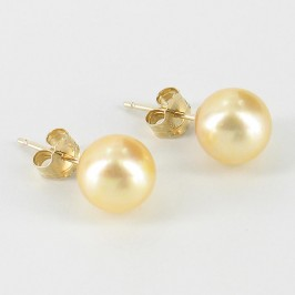 Golden Akoya Saltwater Pearl Earrings 7.5-8mm On 14K Yellow Gold
