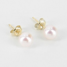 White Akoya AAA Pearl 6-6.5mm Earrings on 9K Yellow Gold