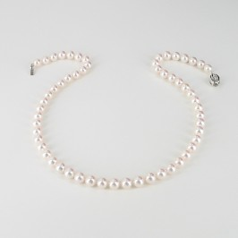 Royal Princess Japanese Akoya Pearl Necklace AAA With 18K White Gold