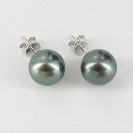 Large Black Tahitian Pearl Earrings on 18K White Gold